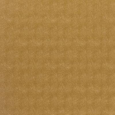 Amur 36-Sunglow