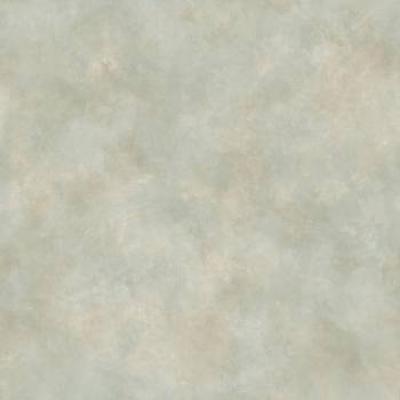 CHR14138