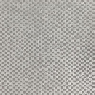 Gila 02-Silver