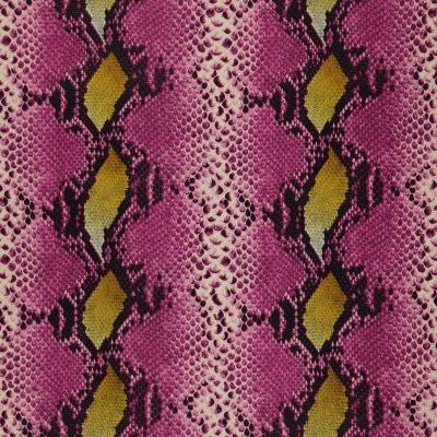 Mamushi36-Tulip