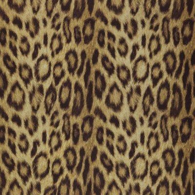 Panthera08-Gold