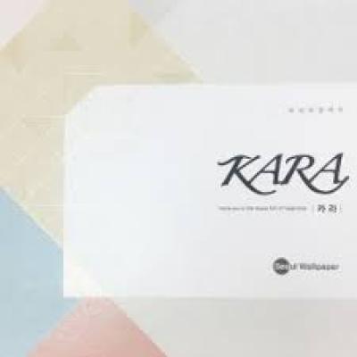 альбом KARA